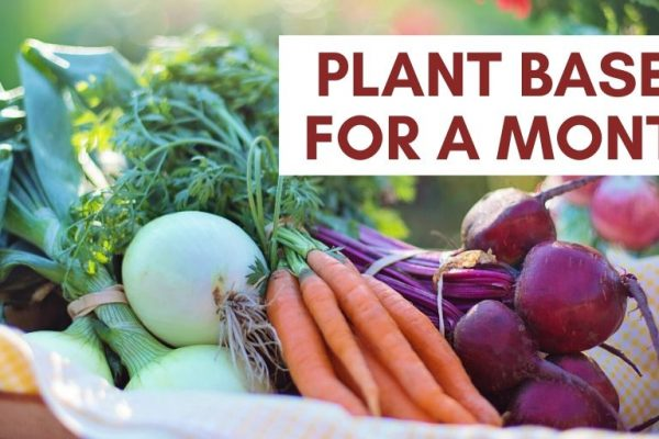 What I learnt eating more plant based